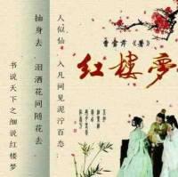 书说天下之红楼梦标准版+续集